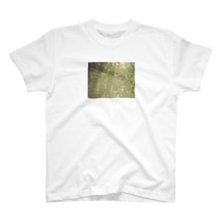 近距離カーテン T-shirts