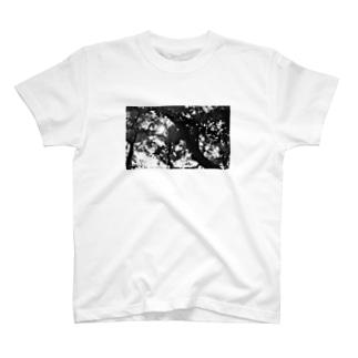 MORI T-shirts