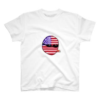 USAあめりかボール(アメリカボール)  T-shirts