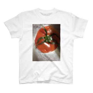 tomato T-shirts