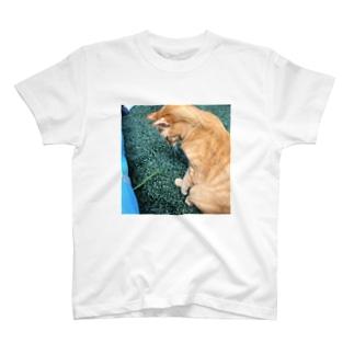 見てるだけ T-shirts