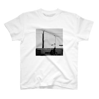 Walk on. T-shirts
