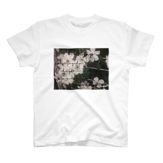 Kimigayo T-shirts