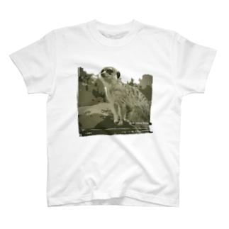 空を見上げるミーアキャット T-shirts