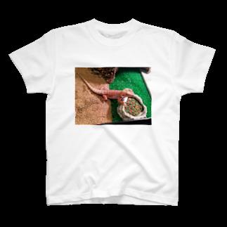 ℋaℛuℳa♝の朱華 T-shirts