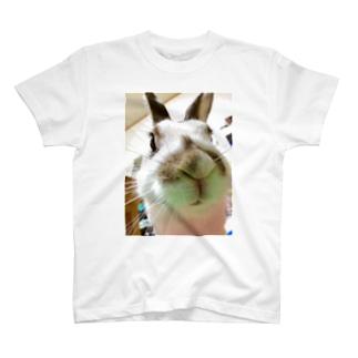 はなの鼻 T-shirts