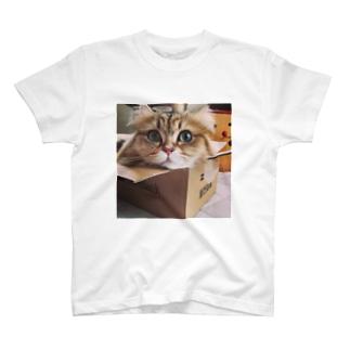 もなか(ガール) T-shirts