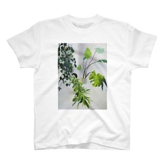 涼しい顔でこちらを見る・・・ T-shirts