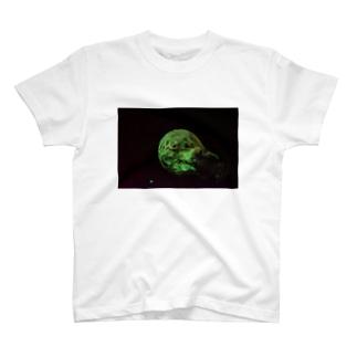 蛍光塗料 T-shirts