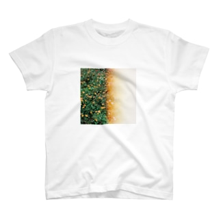 花/感光 T-shirts