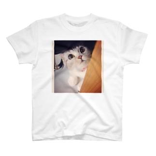 仔鹿kitty T-shirts
