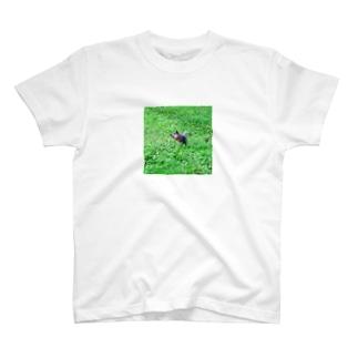 ロシアのリス T-shirts