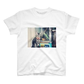 92.3.29 T-shirts