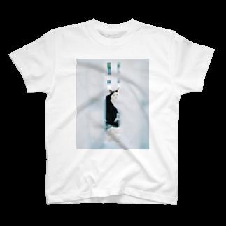 塩川 雄也のSuan Dok Cat T-shirts
