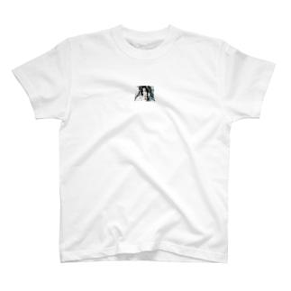 domino. T-shirts