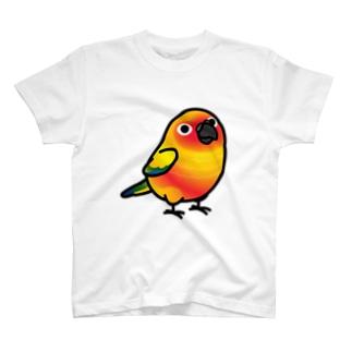 Chubby Bird コガネメキシコインコ T-shirts