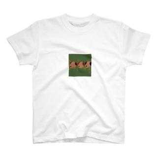 わんわん達🐶 T-shirts