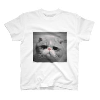 あかはなのププ T-shirts