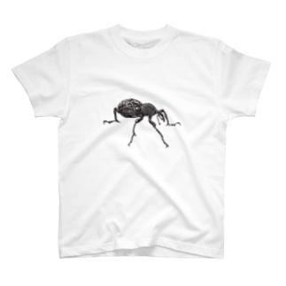 点描のゾウムシ T-shirts