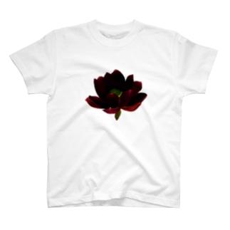蓮 T-shirts