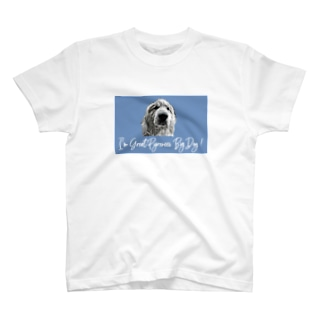 Great Pyrenees Big Dog 1 T-shirts