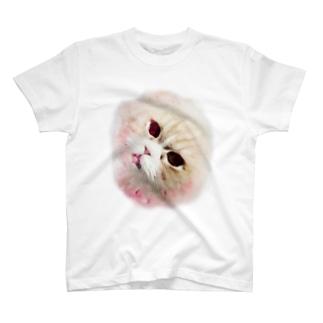 じゃがいもTシャツ T-shirts