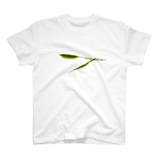ねこじゃらしTachidokoroni Nekoga ASOBU! T-shirts