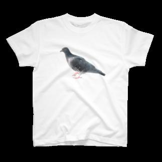 Yusuke Saitohのハト T-shirts
