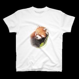 rokoのレッサーパンダA T-shirts