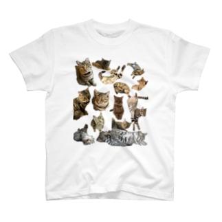 うーたん多め T-shirts