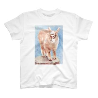 仔ヤギ T-shirts