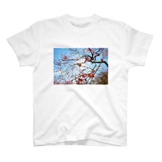 梅T T-shirts