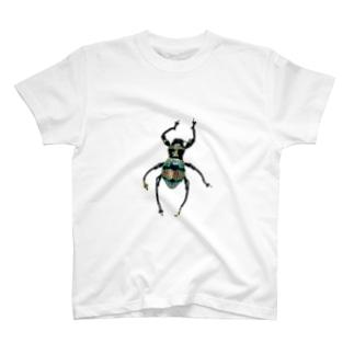 美麗なカタゾウその2 T-shirts