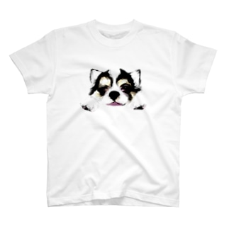 チワワの長老ウィンク T-shirts