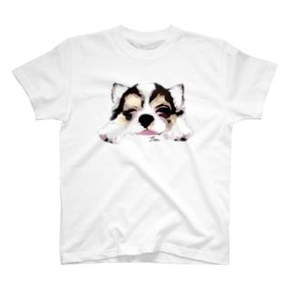 チワワの長老のウィンク T-shirts