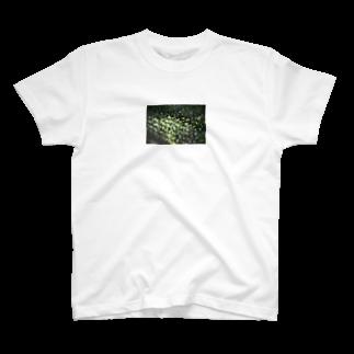 HANACHO-CHINのgreen light 2 T-shirts