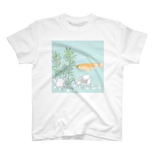 秦恋さんの企画記念作品 T-Shirt