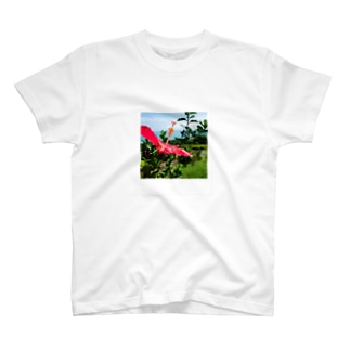 HIBISCUS T-shirts