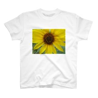 太陽とお友達!! T-shirts