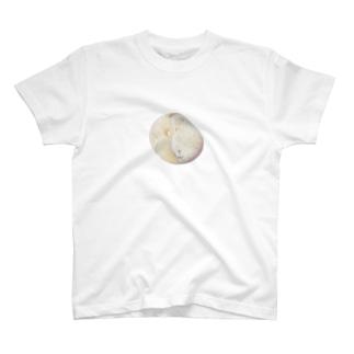 ミントチョコみたいな石 T-shirts