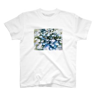 ネモフィラ T-shirts