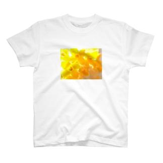 flowers 2 T-shirts