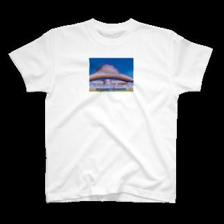 junkodeeesuのDBMM T-shirts