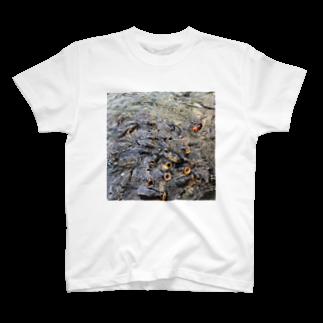 NYANGOROのパクパクコイ鯉 T-shirts