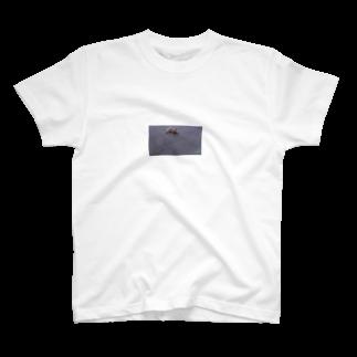 〰️〰️のちゃんねこ T-shirts