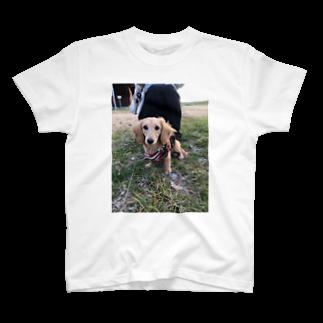 0mのずり T-shirts