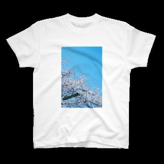 花束のような日常をの君が見ていた桜T T-shirts