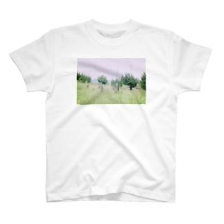 上原遺跡 T-shirts