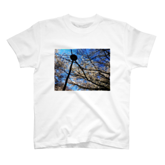 駿河屋ガルスの桜満開 T-shirts