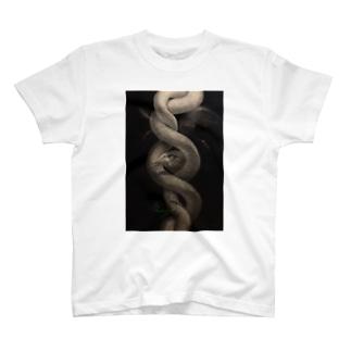 REY 絵画シリーズ 蛇 T-shirts